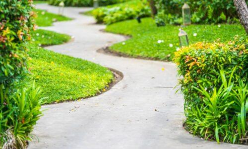 Walk or running path way in the garden